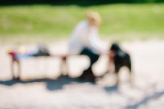 franck patras photographe - chien - pet's life