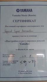 Сертификат мастера настройщика
