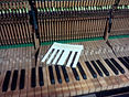 клавиши на пианино
