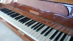 Пианино renisch