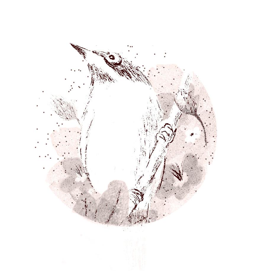 המתתחסד לוגו.jpg