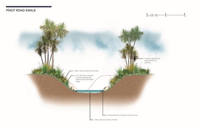 marlborough-vineyard-section-riparian