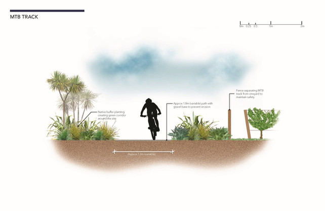 marlborough-vineyard-section-mountain-bike