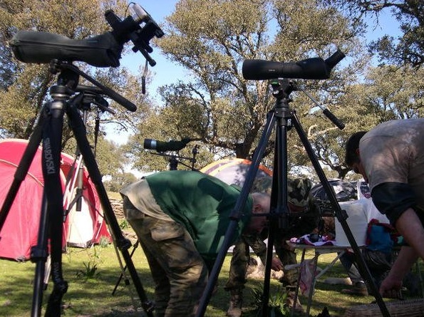 Adalberti Extremadura acampadas