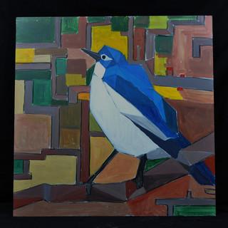 希望の青い鳥