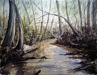 Creek in Alabama.jpg