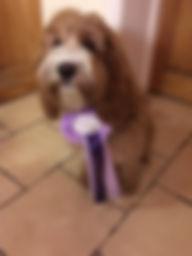 Mabel.JPG
