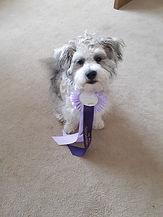 Barney - Burton.jpg