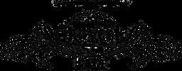 ravenlogoblack-300x117.png