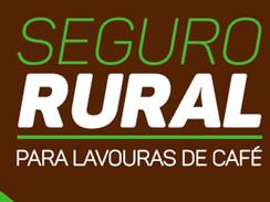 BALANÇO SEMANAL CNC — 13 a 17/09/2021