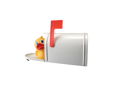 Rubber Duck in a Mailbox.png