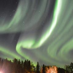 aurora Koiteli.jpg