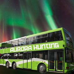 aurorahunting_nelio.jpg