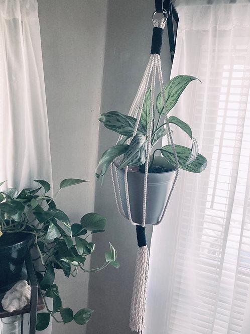 Minimalistic Monochrome Plant Hangers