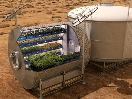 Why Space Gardening Should Come Down to Earth
