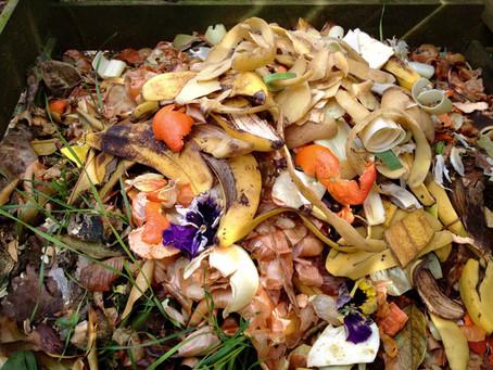 Food waste: The dark cloud of mankind