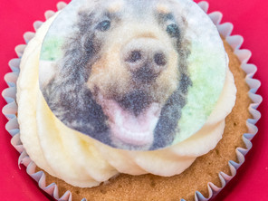 £186.75 raised at Buster's Coffee Morning & Playtime for The National Canine Cancer Foundati