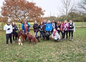 Hill Rise Dog Park Ongoing Community Project Fundraiser