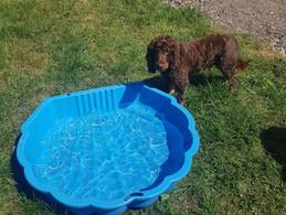 Having a Splash this Summer