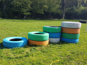 New Enrichment at Mutt Meadow