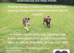 Hillrise Dog Walkies