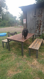 new table 2.jpg
