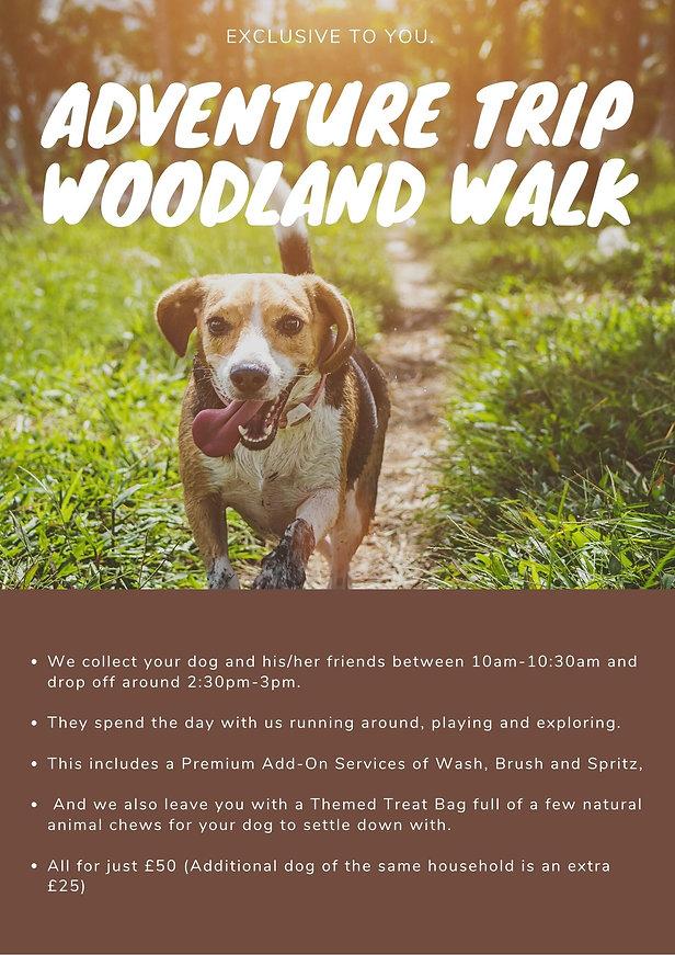 Woodland adventure trip.jpg