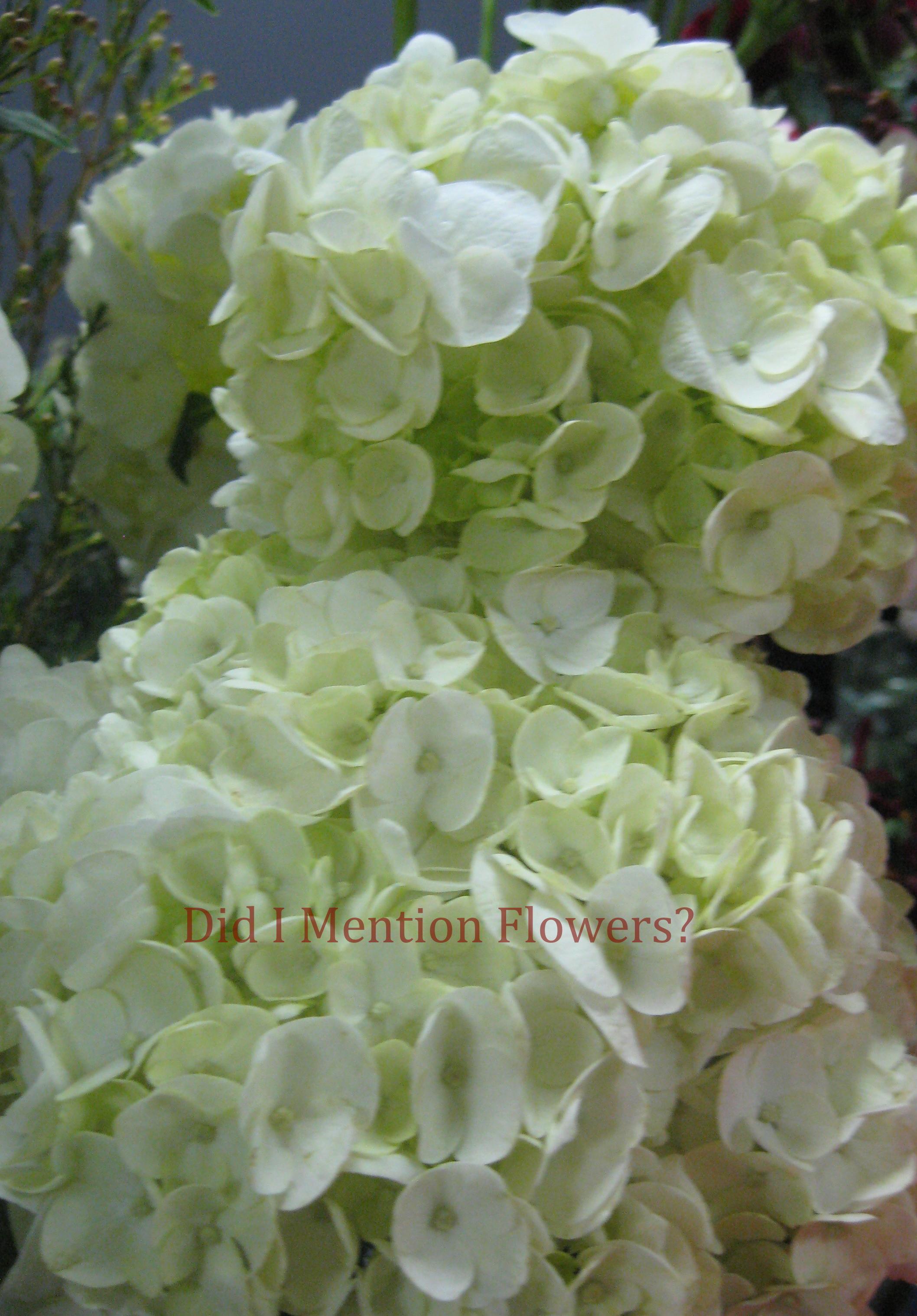 5 - White Hydrangeas