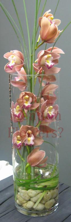 Mini Cymbidium Orchid Vase Arrange.