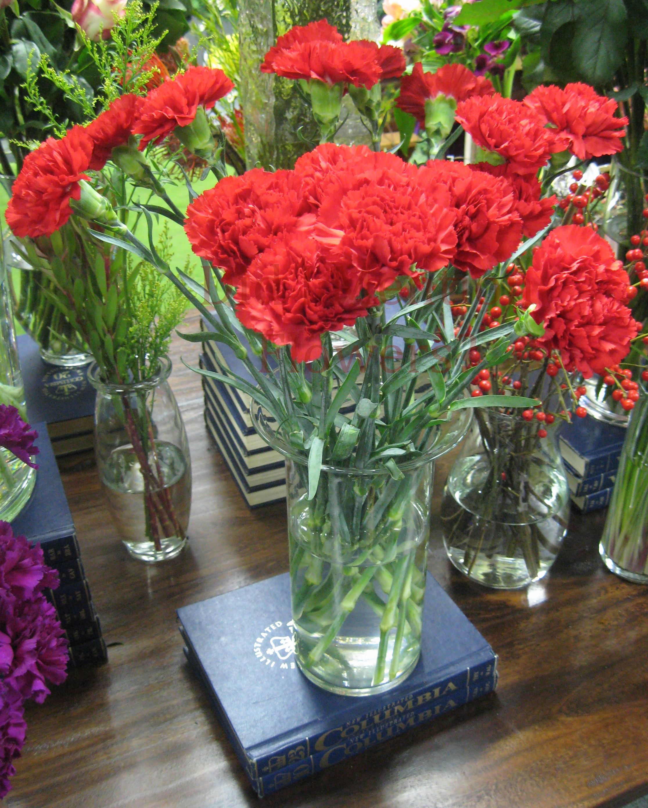 11 - Red Carnations