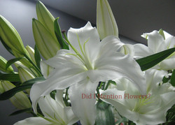2 - Lilies