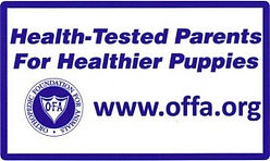 OFA-Health-Tested-300x179.jpg