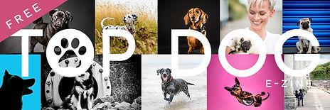 Top Dog Banner.jpg