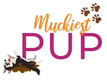 Virtual Puppy Competition-04.png