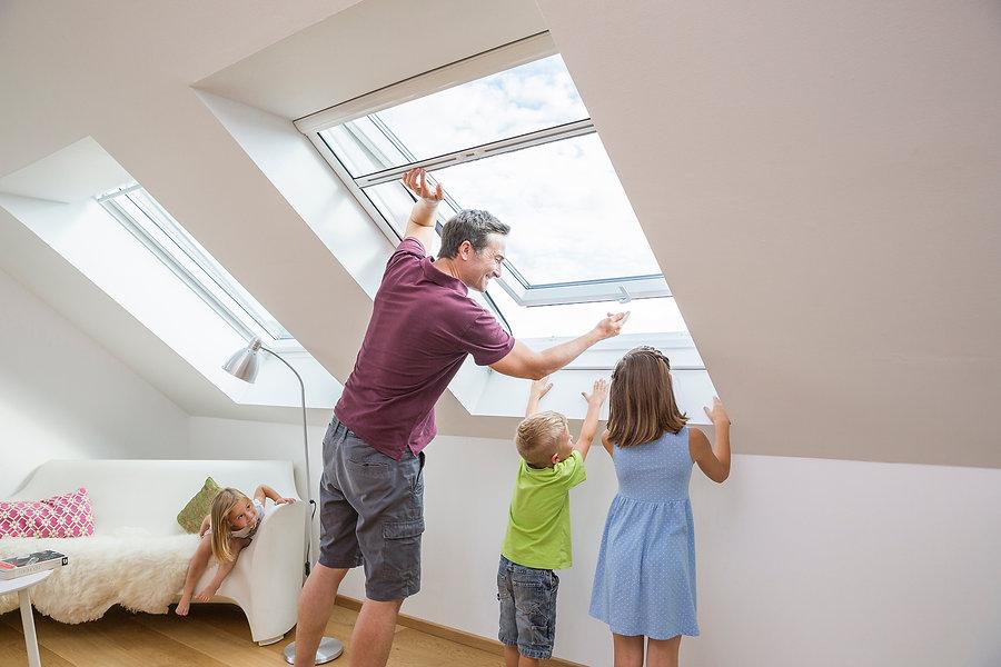 Insektenschutz für Dachfenster-Winter Cr