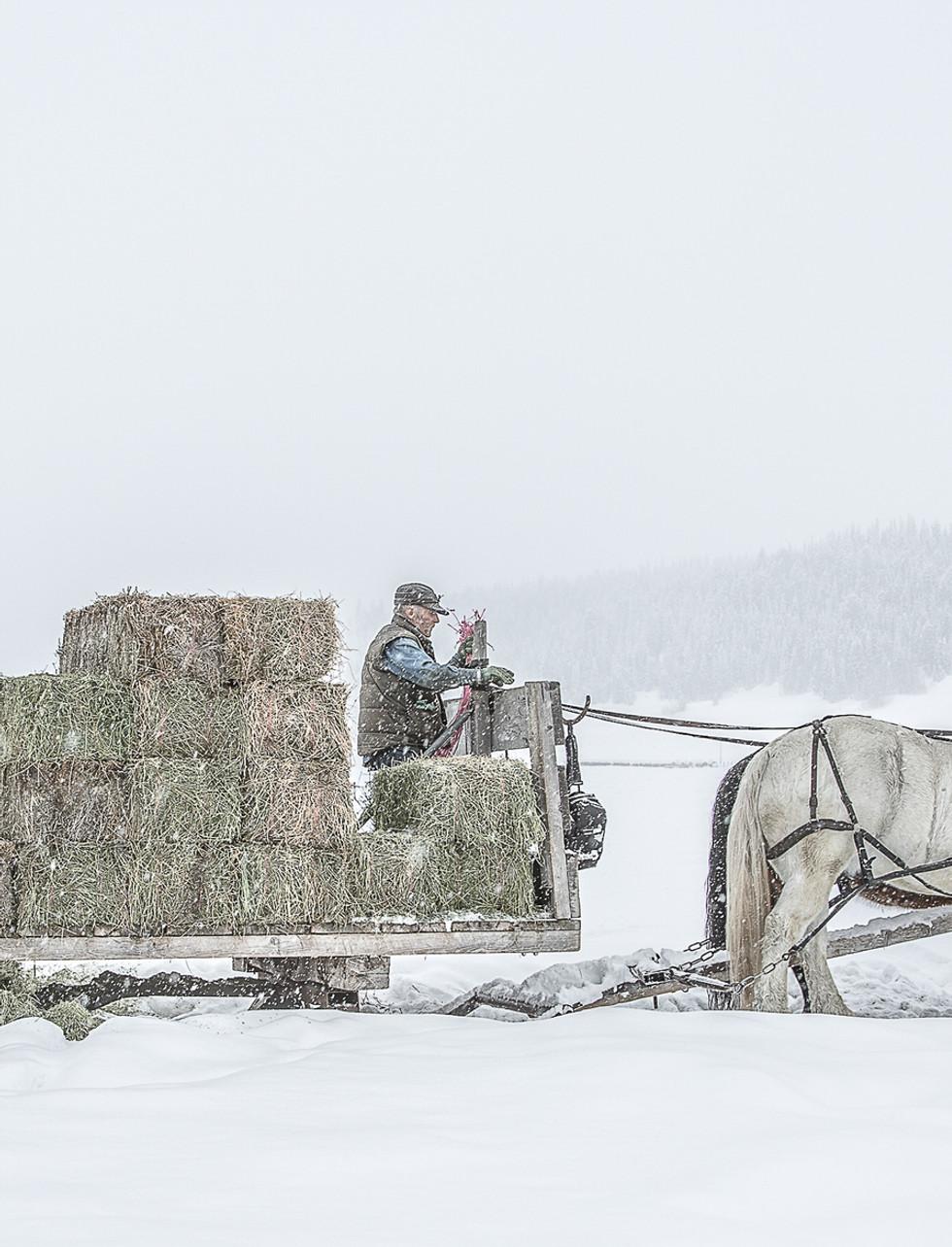 Winter team shots-5109.jpg