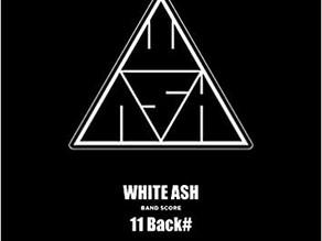 WHITE ASH 「11 Back#」