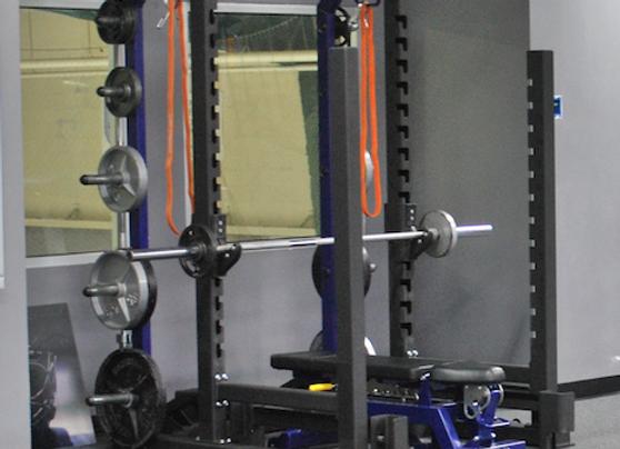 Cybex Heavy Duty Power Cage + Locking Bench