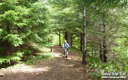 2-sandy-ridge-trail