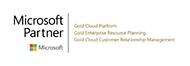 Microsoft Partner logo.png