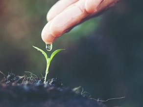 Como reduzir a sua conta de água sendo mais sustentável