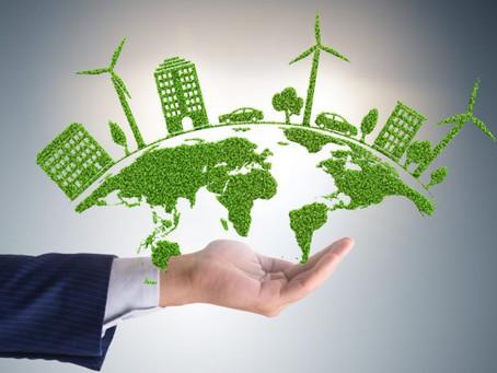 Marketing Verde como nicho para captação de clientes: quais práticas são necessárias?