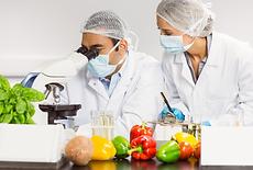 análise de alimentos.png