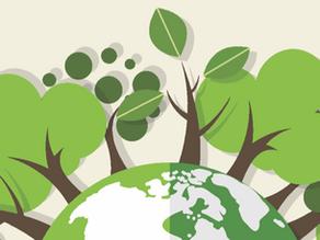 Sustentabilidade também é sinônimo de economia