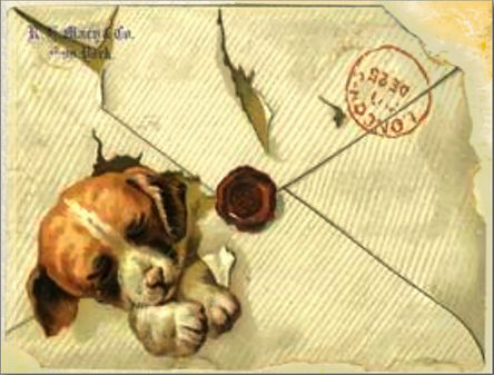 postal con perrito