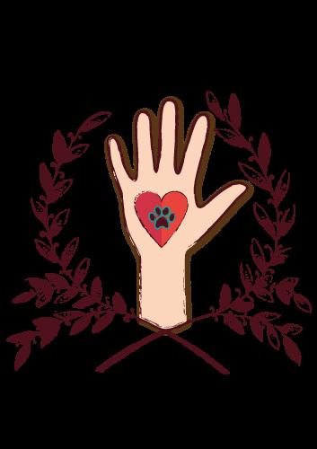 Voluntariado en la Protectora de animales de Tarazona (Zaragoza)