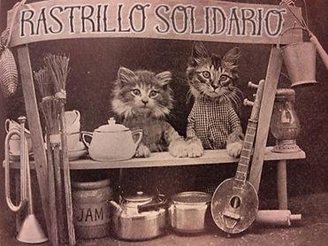 Rastrillos solidarios a favor de la Protectora de Tarazona (Zaragoza)