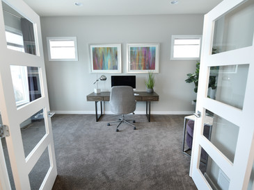 Carpet and blinds