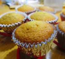 Butterabee Cupcakes       