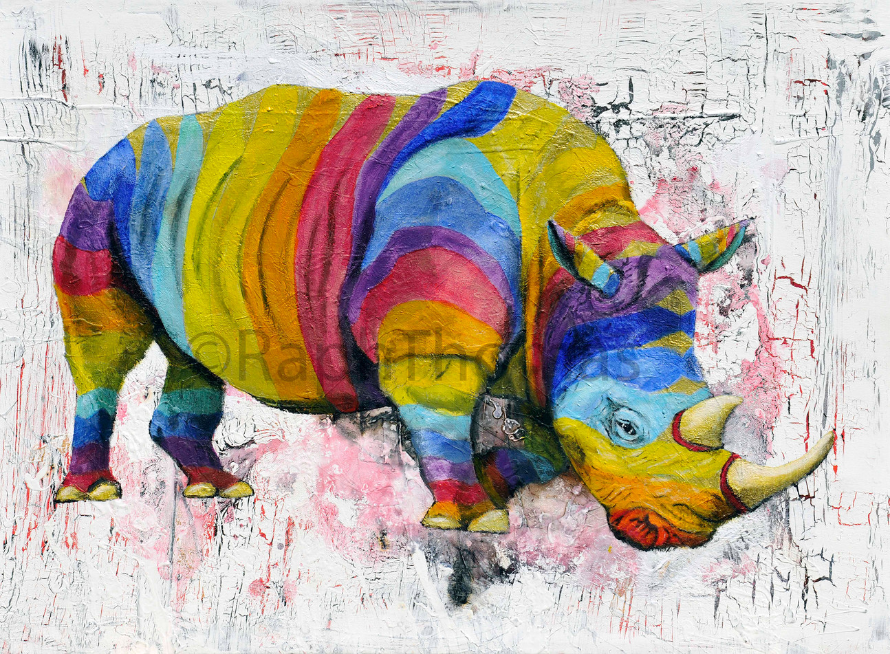 Rainbow rhino 4